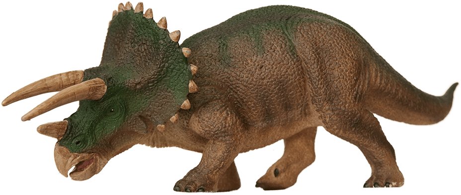 Triceratops. Foto: Annica Roos, NRM